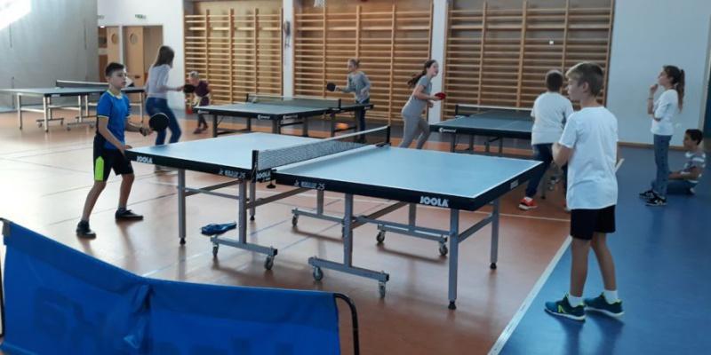 Házi ping-pong bajnokság